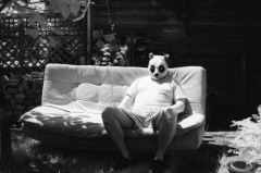 Domestic Panda: Infrared.