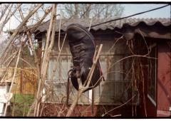 looking at things | abandoned. camera: FED 2. film: kodak color. location: dacha druzhba 5.