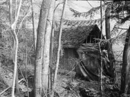 In Hell: The Black Lodge. Camera: Zorki 1. Film: Kodak Tri-X 400. - Twin Peaks Topic.